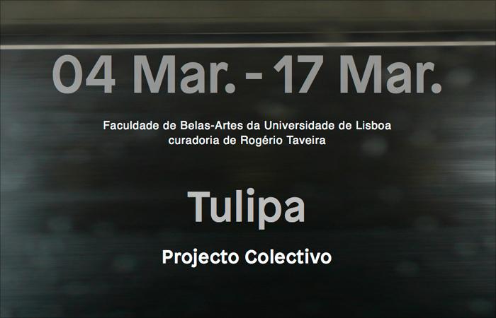 E_2015_TULIPA