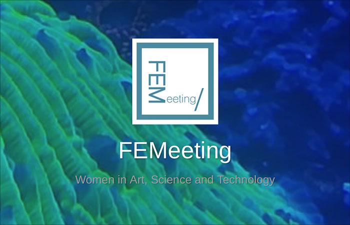 E_2019_FEMEETING