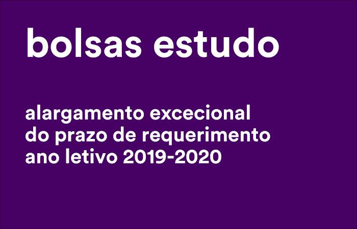 E_2020_BOLSAS